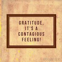 Gratitude, its a contagious feeling. And, I have much to be thankful for! @bigpittstop