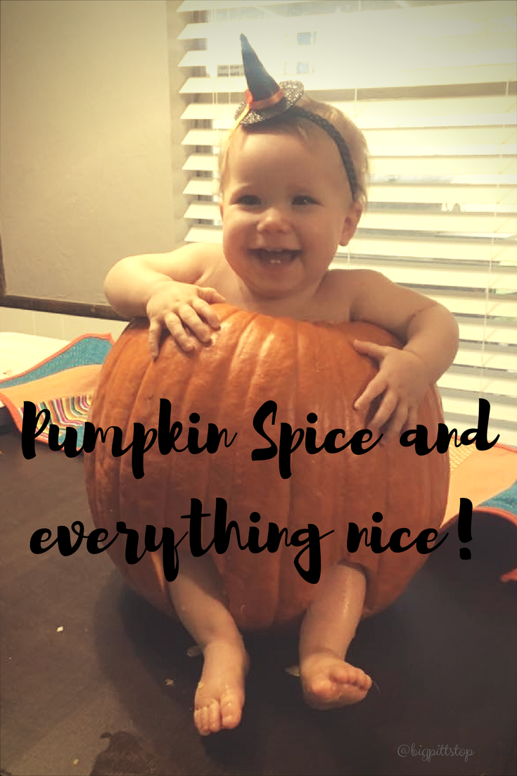 Pumpkin Pie Spice Mix for all your fall pumpkin recipes | @bigpittstop