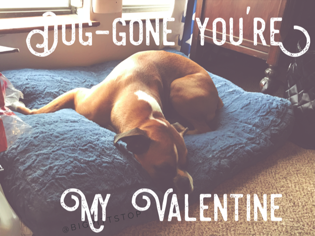 Valentine Sayings   Ideas for gifts to all your Valentines - catchy phrases and sayings by @bigpittstop